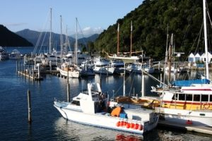 New Zealand, Marlborough Sound, VIP Yacht Charter