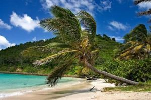 Luxury Yachts, Mega Yachts, Super Yacht, Luxury Yacht, Caribbean Yacht Charters,