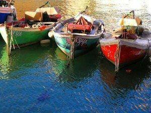 Camogli Fishing Boats www.njcharters.com