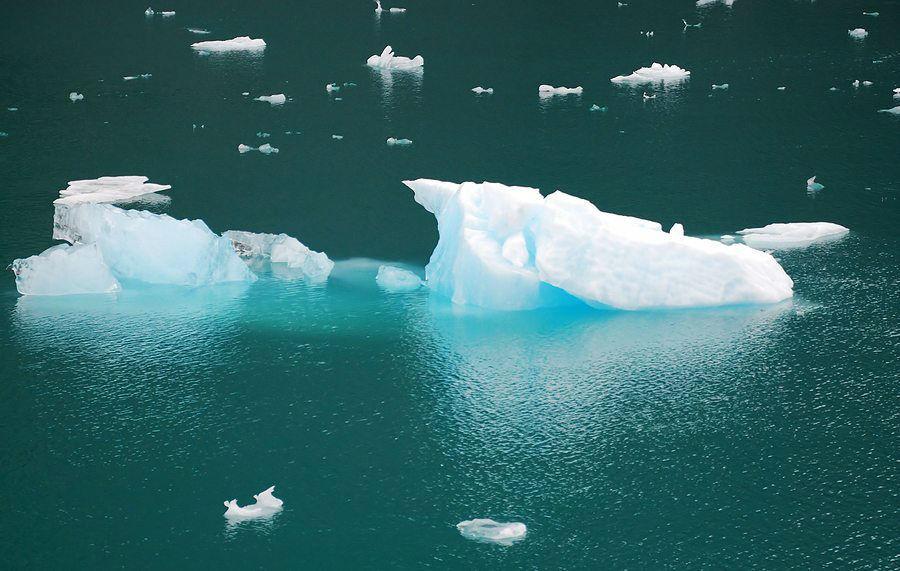 Glacier Bay Icebergs www.njcharters.com