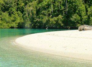 Raja Ampat Green Waters www.njcharters.com