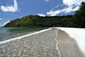 Cape Tribulation Queensland AU www.njcharters.com