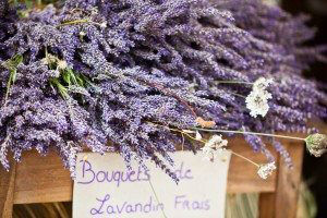 Antibes Market Lavender Bunches www.njcharters.com