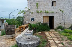 Croatia Brac Olive Oil Museum www.njcharters.com