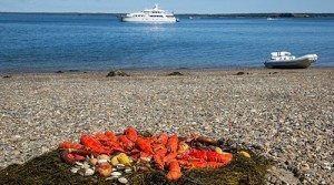 Fresh-Lobster-Boil-on-the-Beach-www.njcharters.com_