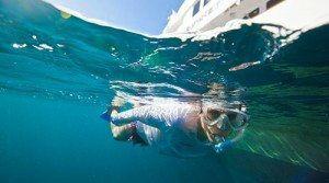 Snorkeling-on-Yacht-Charter-www.njcharters.com_