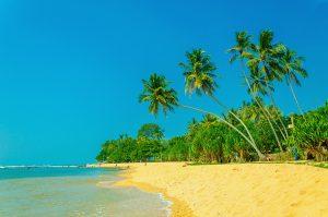 Exotic Caribbean Beach, Grenada