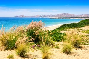 Sea of Cortez and beach in Los Cabos Mexico