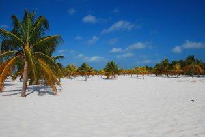 beach of Cayo Largo, Cuba