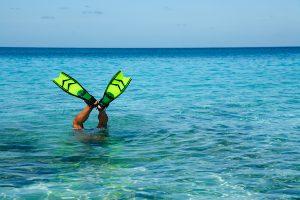 Bahamas , snorkeling, Yacht charter