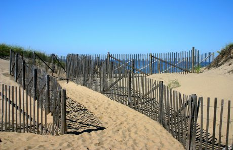 Beaches of New England www.njcharters.com