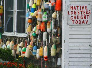 Maine Lobster Pot Buoys www.njcharters.com