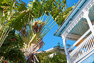 Florida Key West Victorian Homes www.njcharters.com