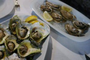 Croatia Mali Ston Bota Restaurant Fresh Oysters