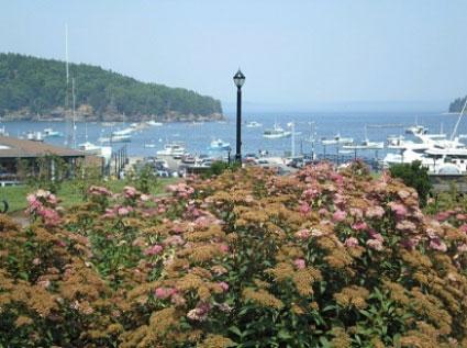 Bar Harbor Maine njcharters.com