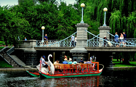 famous swan boats in boston njcharters.com