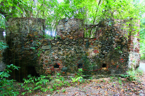 Mount Healthy Sugar Plantation Ruins njcharters.com