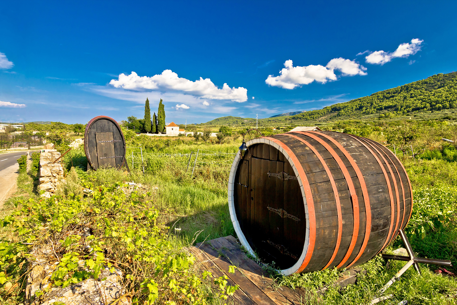 Wine Barrels in Cratia