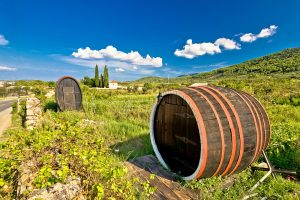 Wine barrels on Stari Grad plain, Hvar island, Dalmatia Croatia