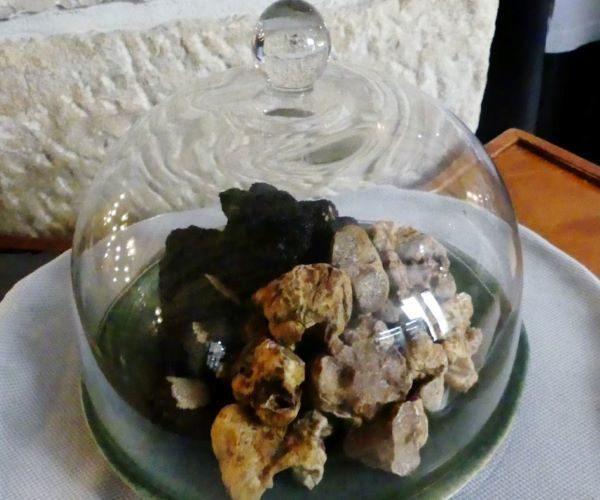 Croatia-Istria-Fresh-Black-and-White-Truffles-njcharters.com
