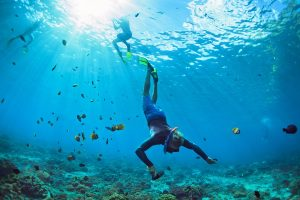 Snorkeling in the Bahamas yacht charter