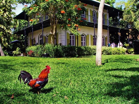 ernest hemingways home key west florida