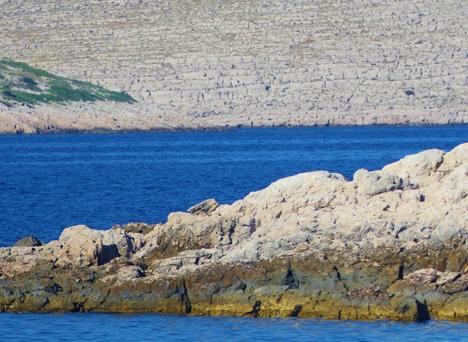 Stark Landscape of the Kornati Archipelago Croatia njcharters.com