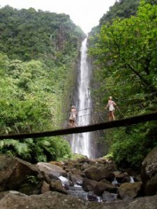 Base Terre Waterfall Guadeloupe
