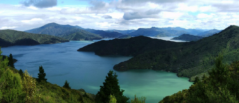 Marlborough Sounds New Zealand yacht charter njcharters.com