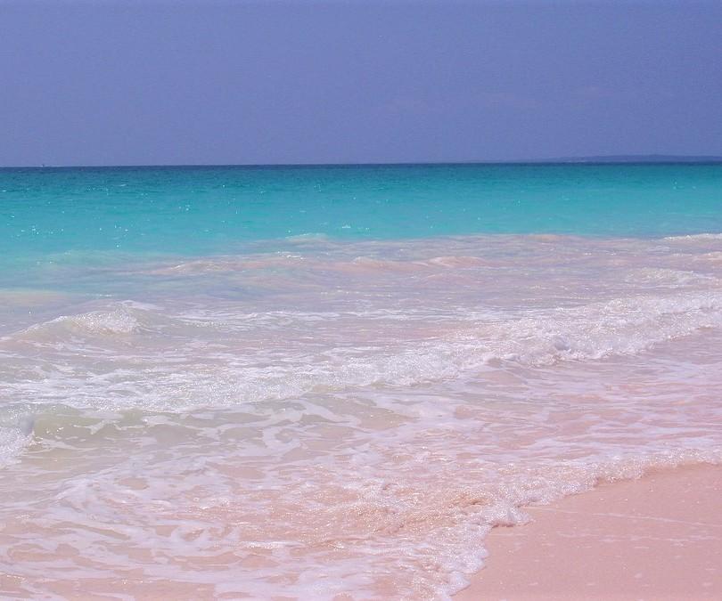 Pink Sand Beach Harbour Island, Bahamas www.njcharters.com